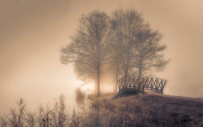Vinteröl 60 x120 cm